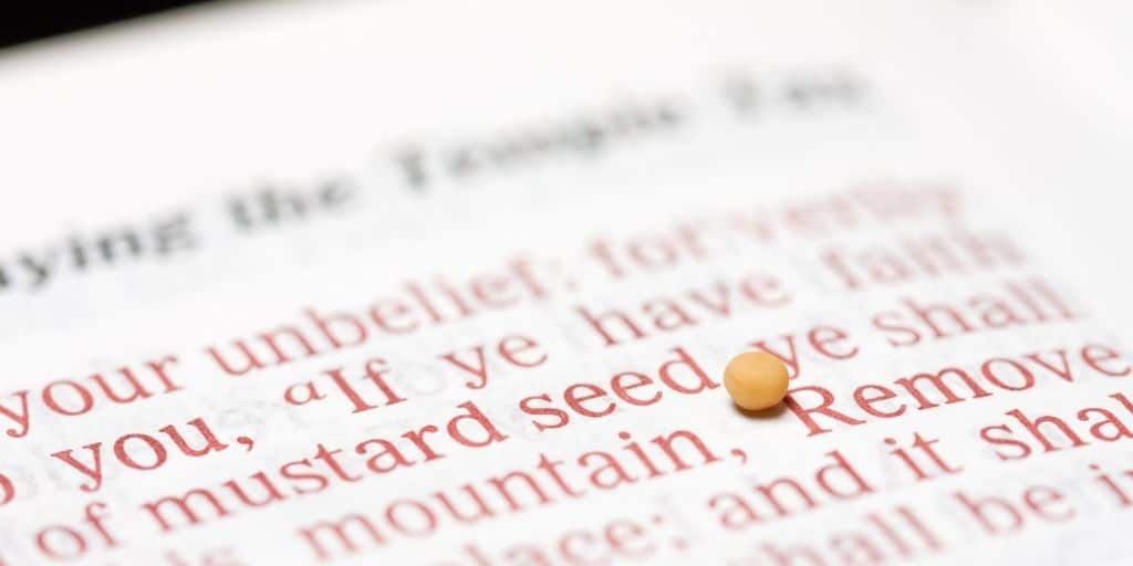 Faith of a mustard seed meaning
